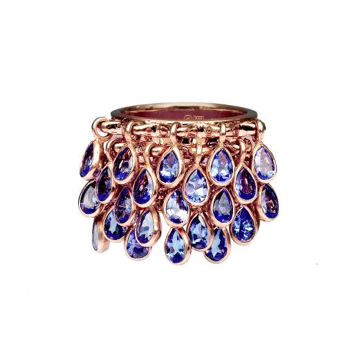 bling-bling ring